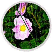 Wild Rose Round Beach Towel