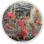Wild Roses In Wood Round Beach Towel