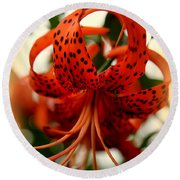 Wild Smokies Lily Round Beach Towel