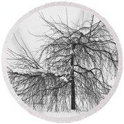 Wild Springtime Winter Tree Black And White Round Beach Towel by James BO  Insogna