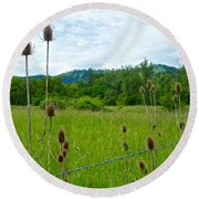 Wild Teasel In Nez Perce National Historical Park-id- Round Beach Towel
