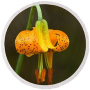 Wild Tiger Lily Round Beach Towel