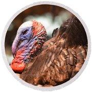 Wild Turkey 2013 Round Beach Towel