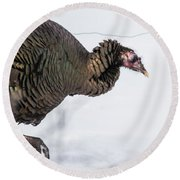 Wild Turkey Round Beach Towel