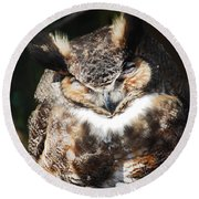 Wilderness Owl Round Beach Towel