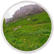 Wildflowers And Mountainous Bluffs At Point Amour In Labrador Round Beach Towel