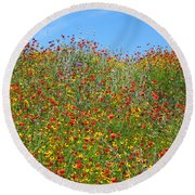 Wildflowers And Sky 2am-110541 Round Beach Towel