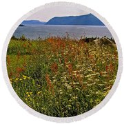 Wildflowers At Lobster Cove Head In Gros Morne Np-nl Round Beach Towel