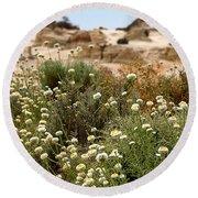 Wildflowers At Mungo National Park Round Beach Towel