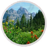 1m9372-v-wildflowers In Cascade Canyon, Tetons Round Beach Towel