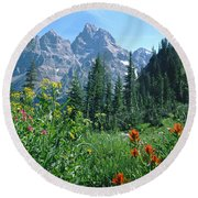 1m9371-h-wildflowers In Cascade Canyon, Tetons Round Beach Towel