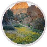 1b6430 Wildflowers In Pinnacles National Park Round Beach Towel