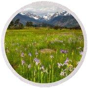 Wildflowers In Rocky Mountain National Park Round Beach Towel