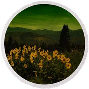 Wildflowers In The Beartooth Mountains Round Beach Towel