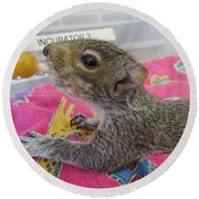 Wildlife Rehabilitation Round Beach Towel