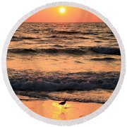 Willet In The Spotlight Round Beach Towel