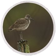 Willet On A Post Round Beach Towel