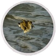 Willet Washing 1 Round Beach Towel