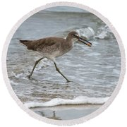 Willet With Mole Crab Round Beach Towel