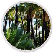 Willis Palm Oasis Round Beach Towel