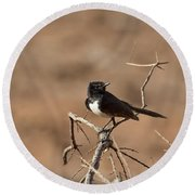 Willy Wagtail V7 Round Beach Towel