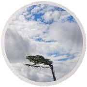 Wind-bent Flag Tree In Tierra Del Fuego Round Beach Towel