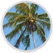 Windblown Coconut Palm Round Beach Towel