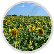 Windblown Sunflowers Round Beach Towel