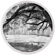 Window Oak - Bw Round Beach Towel