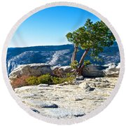 Windswept Tree On Top Of Sentinel Dome In Yosemite Np-ca Round Beach Towel