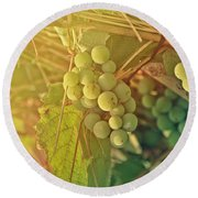 Wine Grapes Round Beach Towel