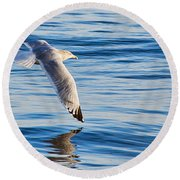Wing Dipping Round Beach Towel