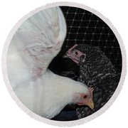 Wings Of A Chicken Round Beach Towel