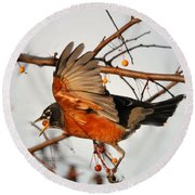 Wings Of A Robin Round Beach Towel