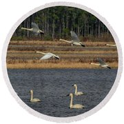 Wings Over Water 2 Round Beach Towel