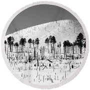 Winter After Fire-san Francisco Peaks Round Beach Towel