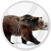 Winter Bear Walk Round Beach Towel