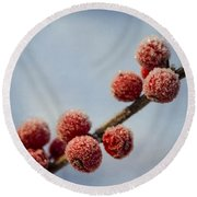 Winter Berries Round Beach Towel