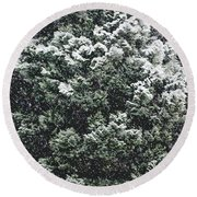 Winter Bush Round Beach Towel