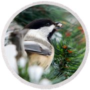 Winter Chickadee With Seed Round Beach Towel