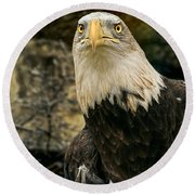 Winter Eagle Round Beach Towel
