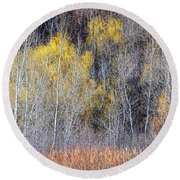 Winter Forest Landscape With Bare Trees Round Beach Towel