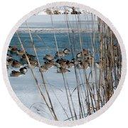 Winter Geese - 04 Round Beach Towel
