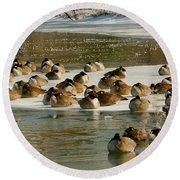 Winter Geese - 06 Round Beach Towel