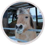 Winter Horse Round Beach Towel