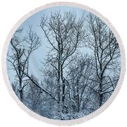 Winter Morning View Round Beach Towel