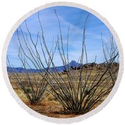 Winter Ocotillo Garden Round Beach Towel
