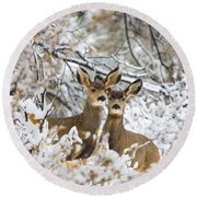Winter Pair Round Beach Towel