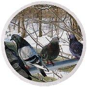 Winter Pigeon Party Round Beach Towel