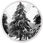 Winter Pines Round Beach Towel